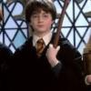 DIYPG: Potterpalooza!
