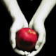 YPG Book to Film Club: Twilight